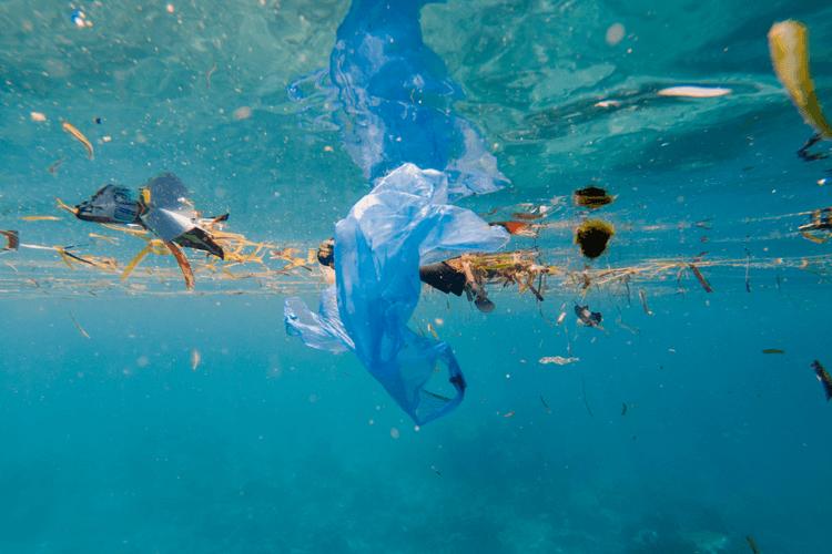 Contaminación provocada por plásticos flotando en el mar
